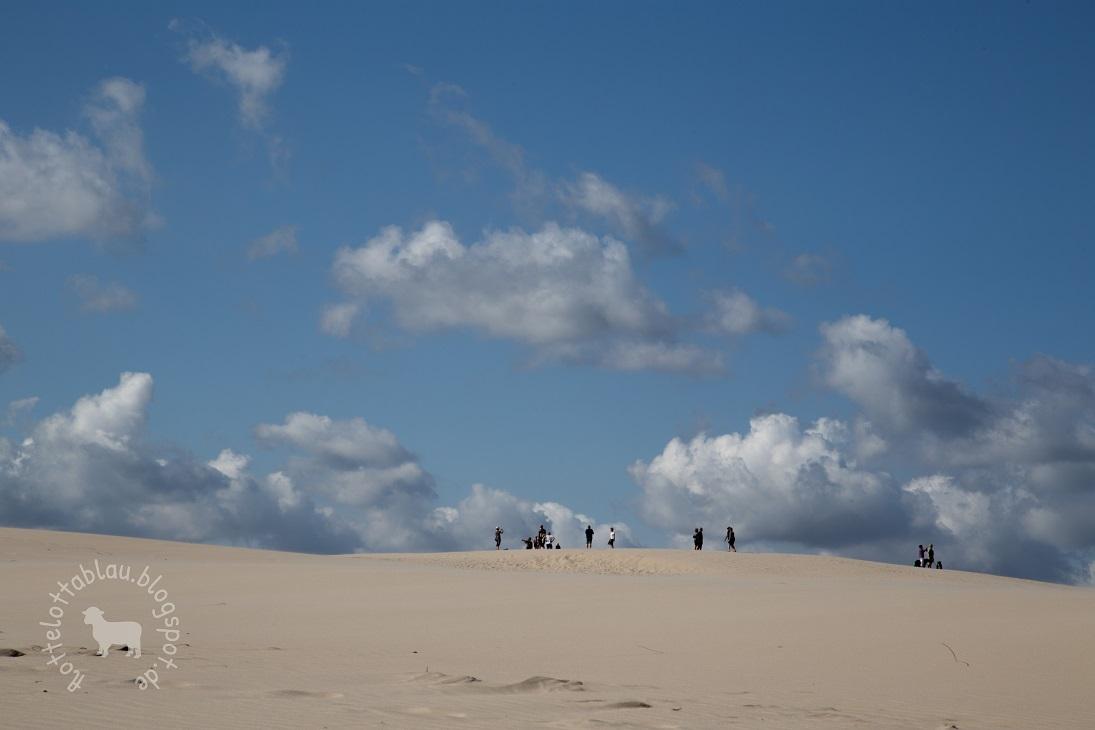 Ab in die Wüste…