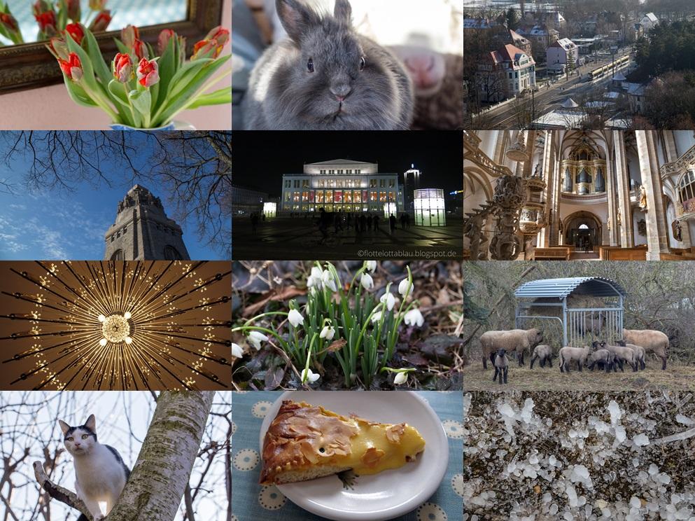 Monats-Collage Februar