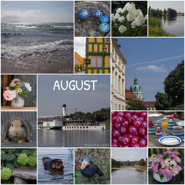 Monats-Collage im August