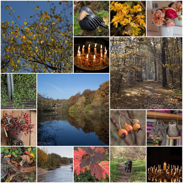 Monatscollage November