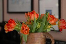 Freitagsblumen und März-Shelfie