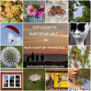 bunt_ist_die_welt_logo_4