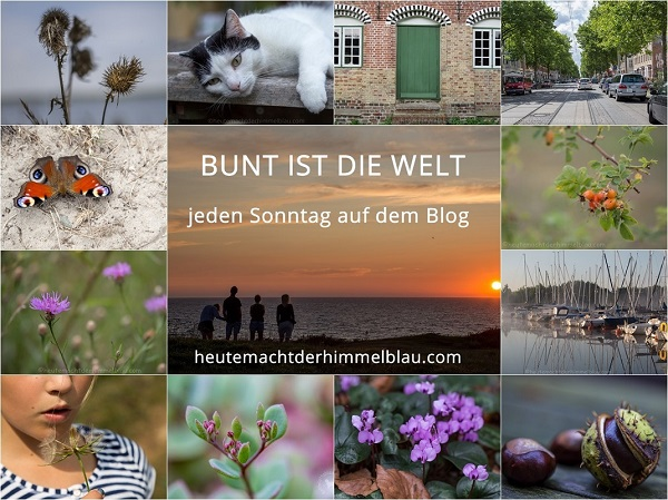 button_bunt_ist_die_welt_2016_bearbeitet-kopie