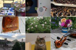 Wochenrückblick in Bildern