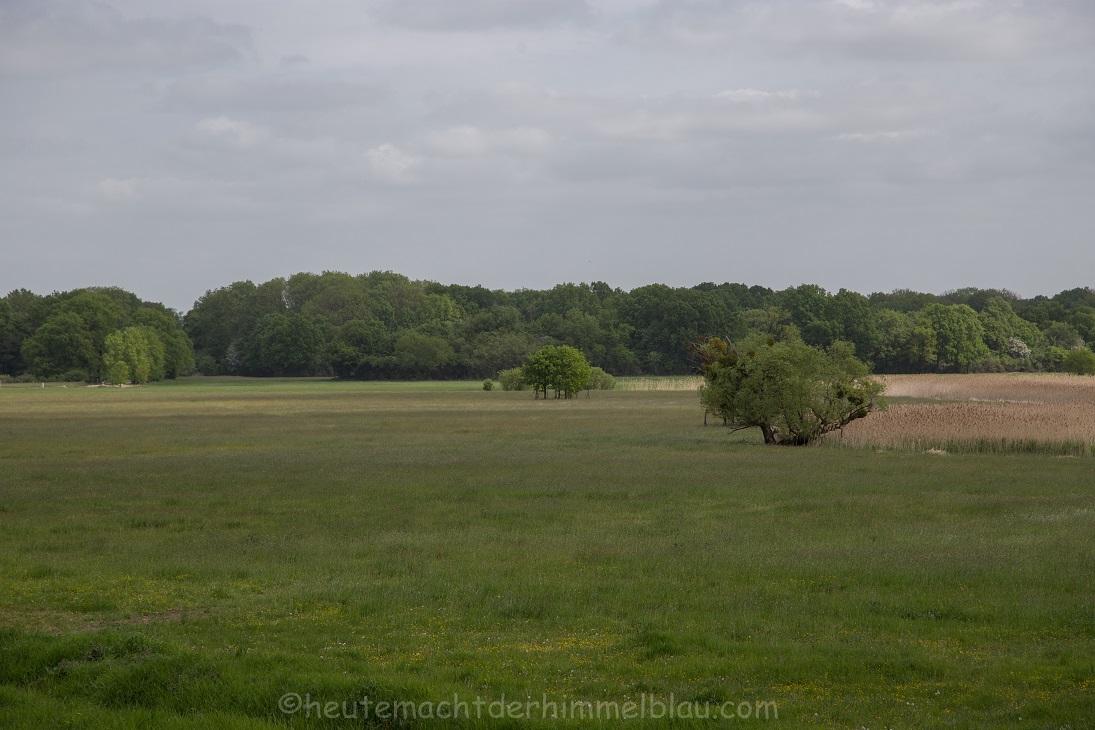 Biosphärenreservat Mittelelbe