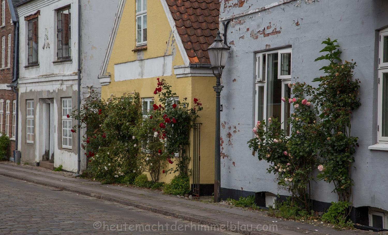 Ein Besuch in der ältesten Stadt Dänemarks