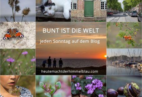 Bunt_ist_die_welt_logo