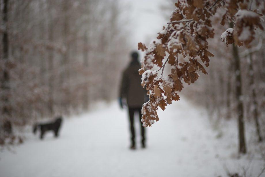 Winterblues?