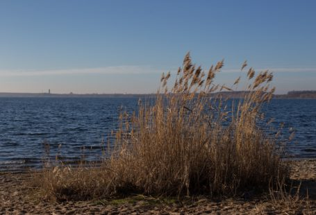 Nordufer