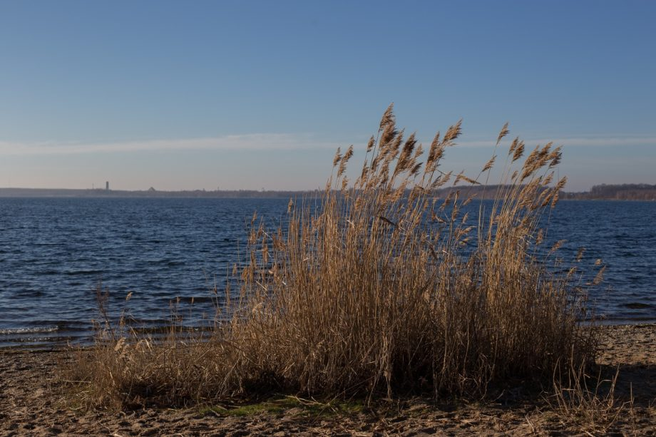 Am Nordufer…