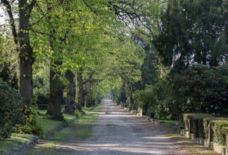Südfriedhof