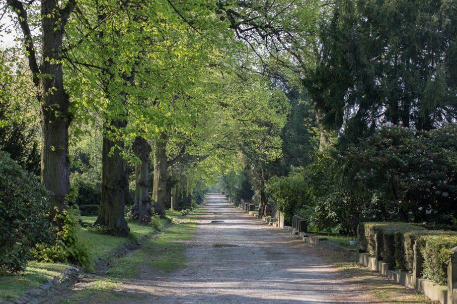 Der Südfriedhof Leipzig