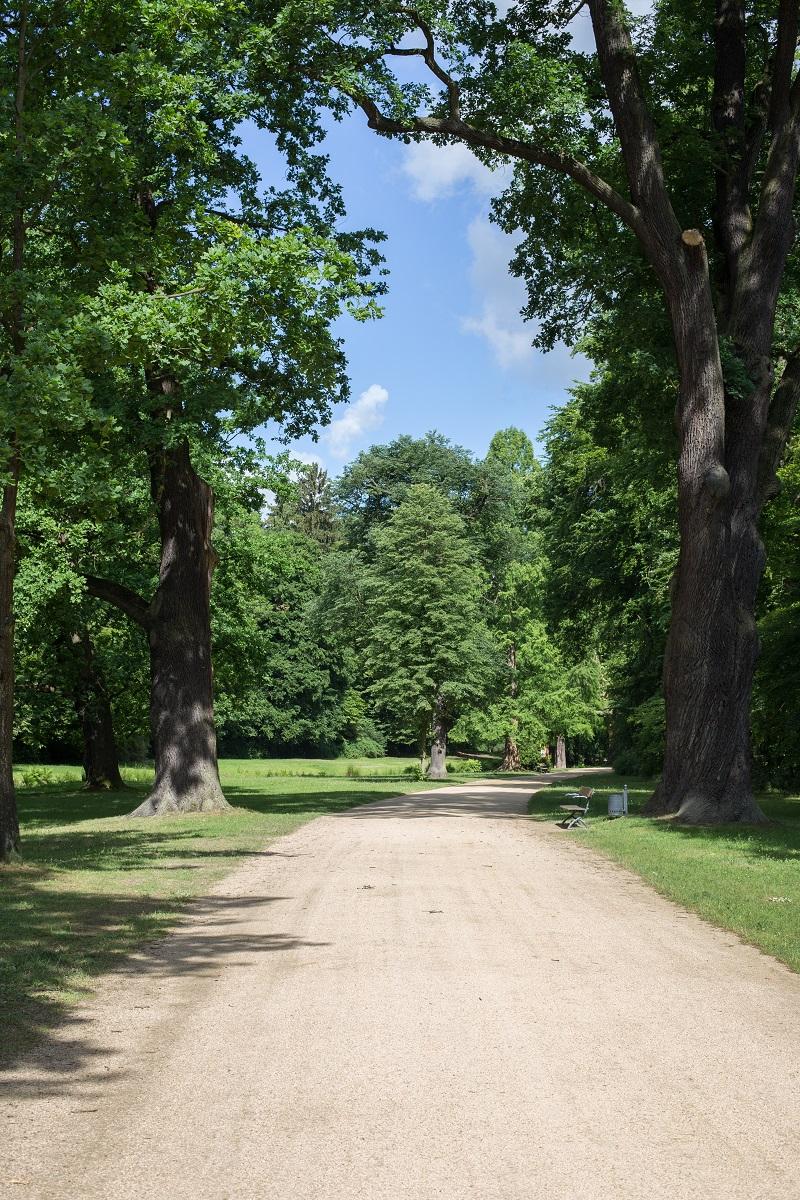 Schlosspark Muskau
