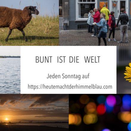 logo_bunt_ist_die_welt