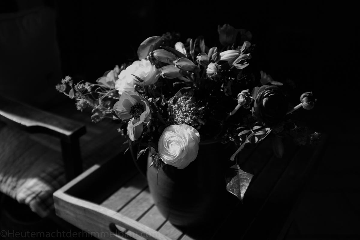 Tulpen und Co
