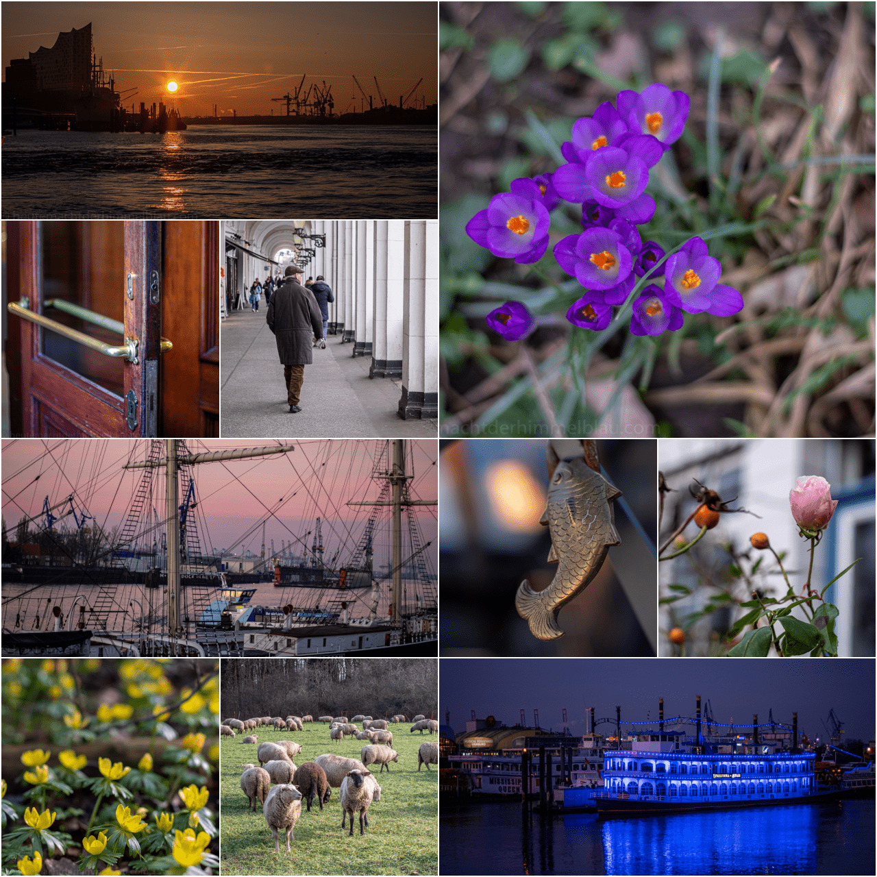 Collage Februar