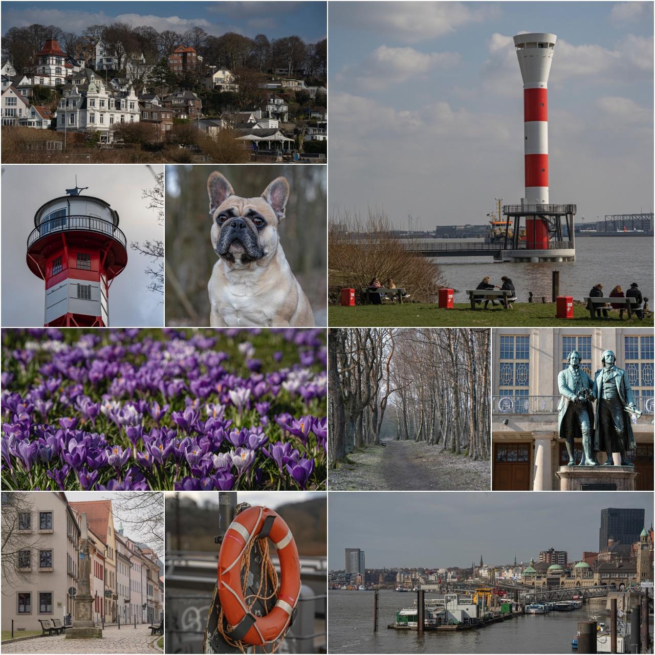 Collage März