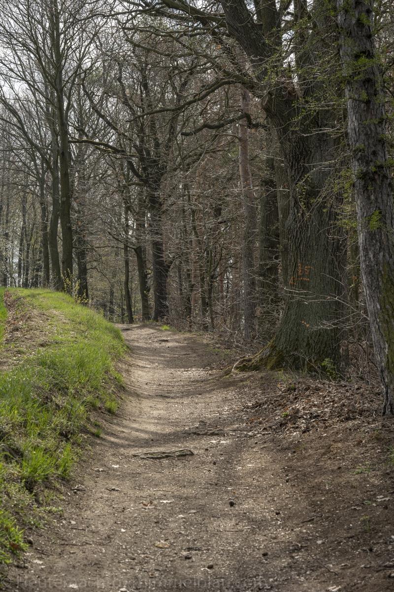 Bastei-Aussicht