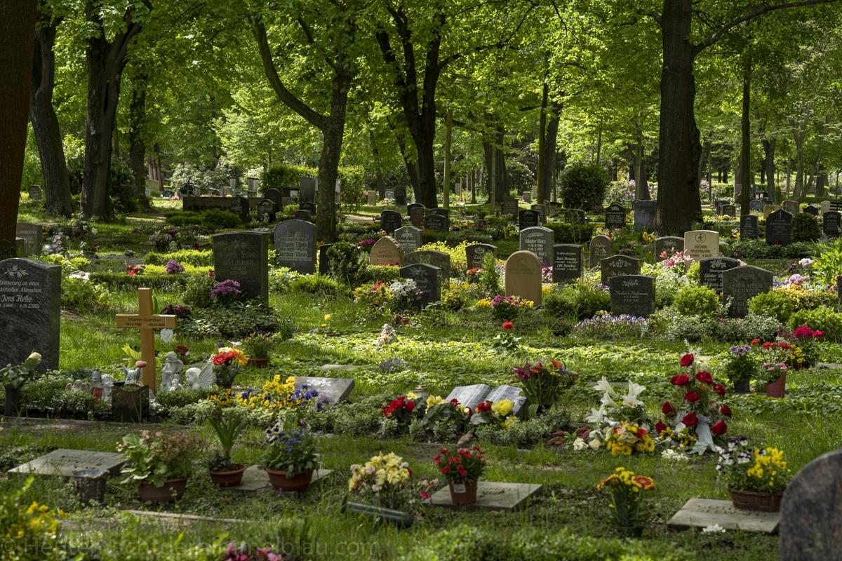Friedhof Pirna